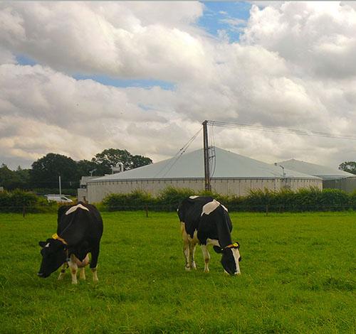 Landwirtschaftliche Biogas-Projekte